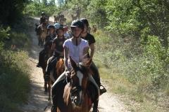 camp d'été 2012 à la ferme des cabriole