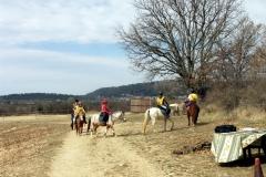 endurance du 11/03/2012