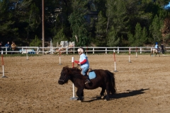 pony-games 02/12/12