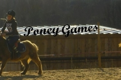PONY-GAMES du 20 Fevrier 2011