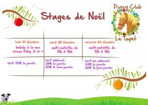 stages-noel_2015